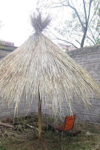 beach umbrella with bamboo frame and grass thatch roof